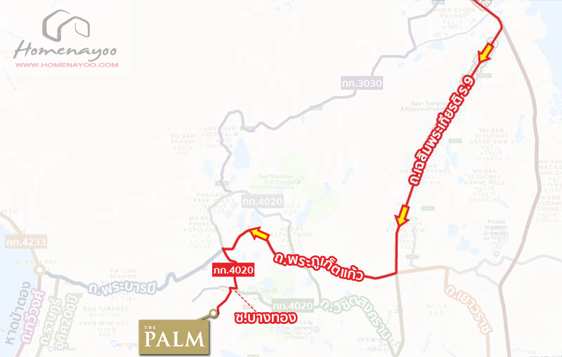 map-palm-plant-katu-patong-11-11