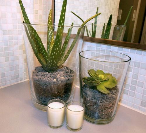 Best Bathroom Plants To Decorate Your Modern Bath With Greenery: รีวิวคอนโด คอนโดใหม่ บ้านเดี่ยว ทาวน์โฮม ทาวน์เฮ้า