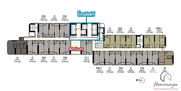 floor-21