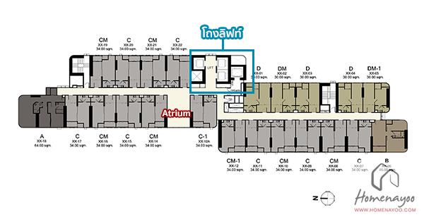 floor-41