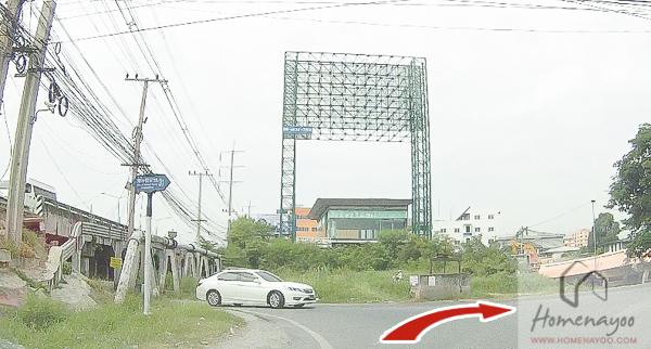 the plant รังสิตค2-RRE-8