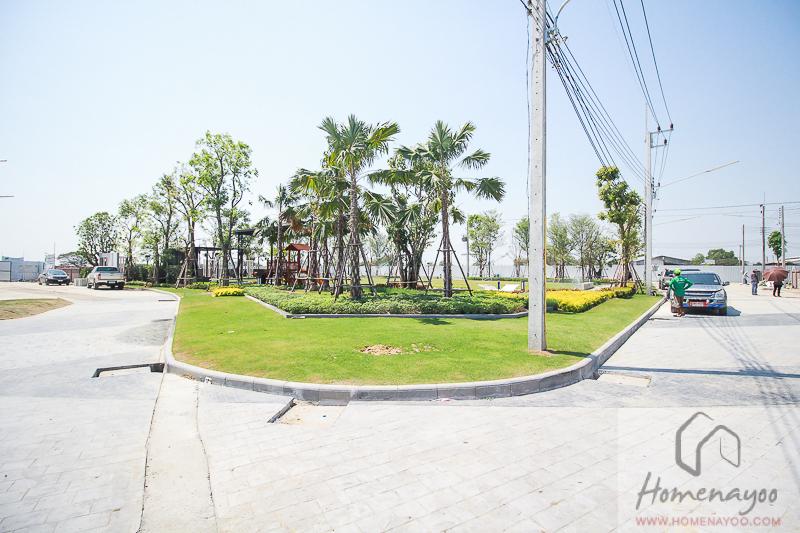 The Plantวว-ลลก-ค2-นคกRE-35