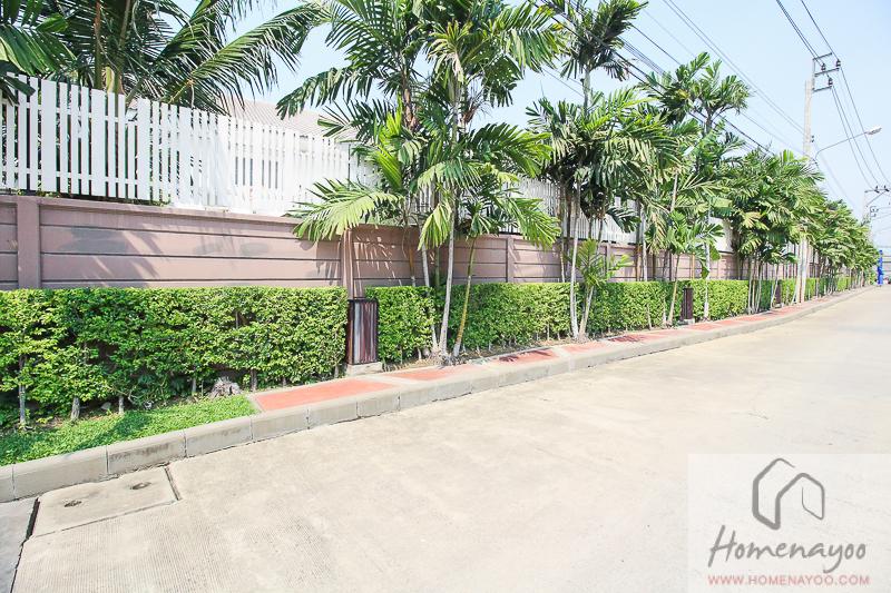 The Plant Resort-ตคกRE-4