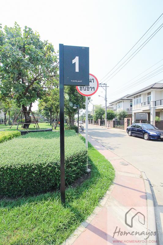 The Plant Resort-ตคกRE-40