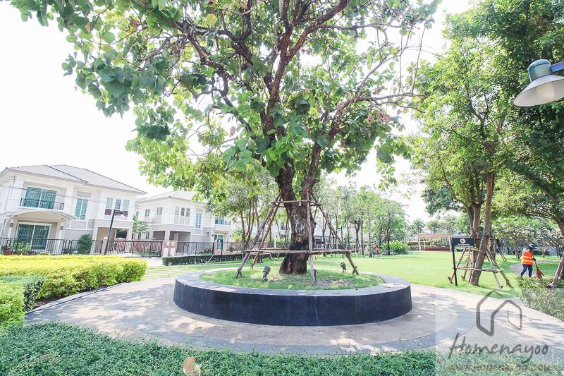 The Plant Resort-ตคกRE-42
