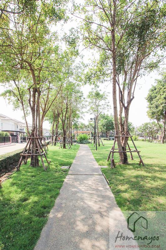 The Plant Resort-ตคกRE-45