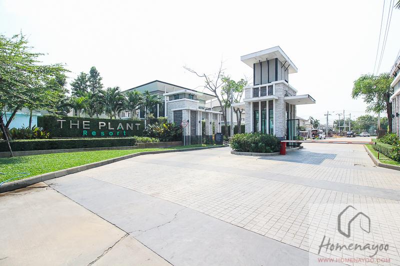 The Plant Resort-ตคกRE-5