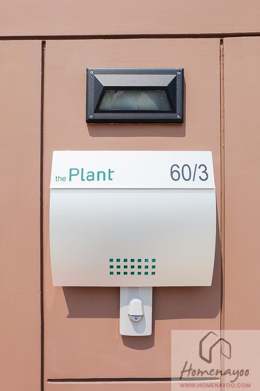 The Plant Resort-บตย-7
