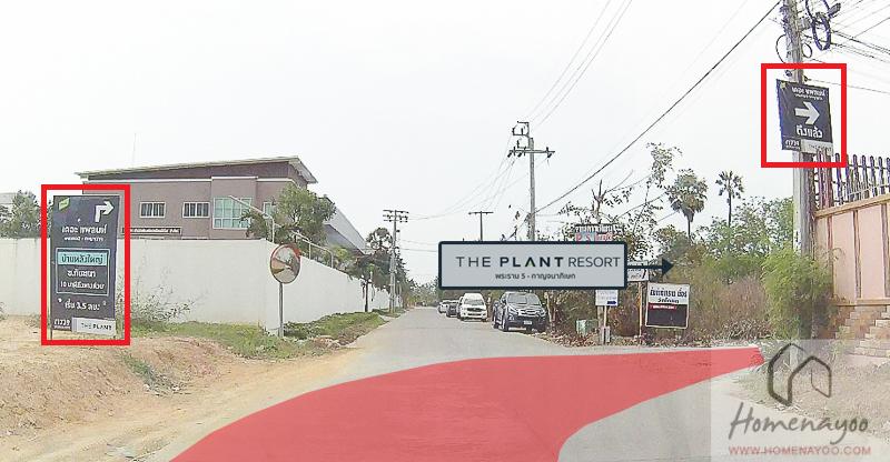 The Plant Resort-RRE-20