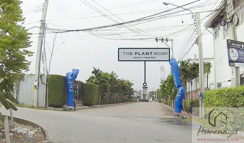 The Plant Resort-RRE-21