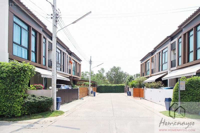 The plant ลำลูกกา-นคกRE-37