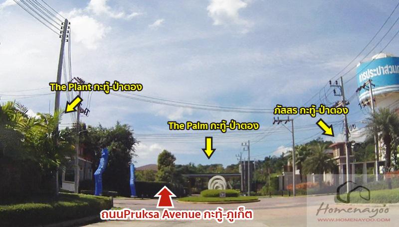 car-plantpalm-phuket-08-08