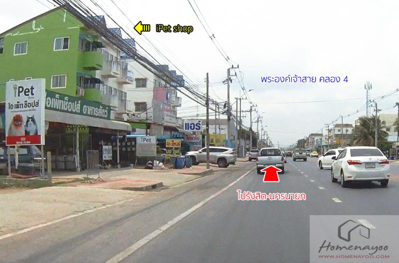 Bella_street015