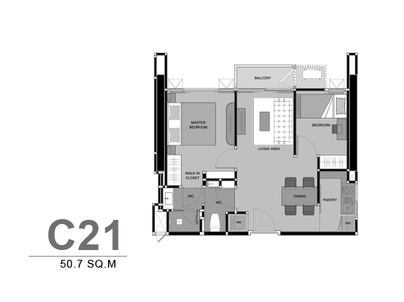 TYPE-C21