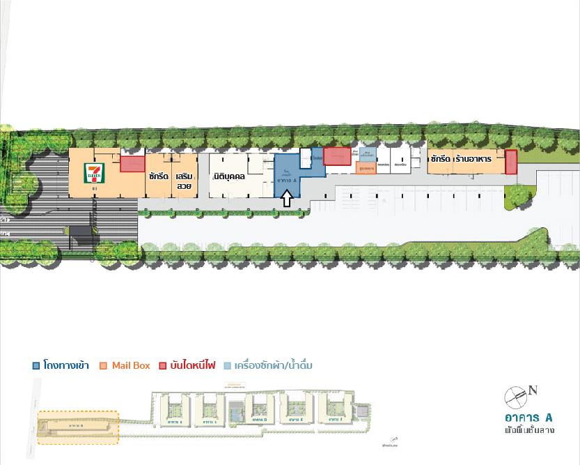 plan LPN113-01