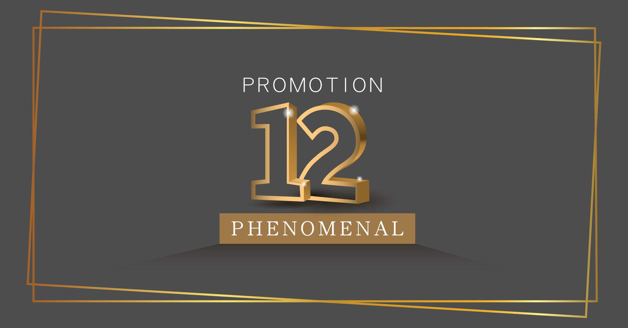 Logo 12 Phenomenal-02 - Copy